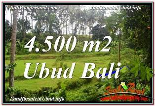 TANAH di UBUD BALI DIJUAL 4,500 m2 VIEW LINGKUNGAN VILLA