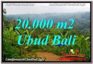 DIJUAL TANAH MURAH di UBUD 20,000 m2 di UBUD PAYANGAN