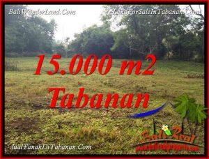 TANAH DIJUAL di TABANAN 150 Are VIEW KEBUN DAN SUNGAI