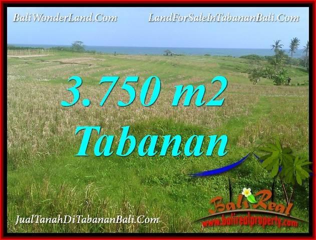 TANAH MURAH DIJUAL di TABANAN BALI 3,750 m2 di TABANAN SELEMADEG