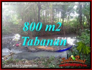 TANAH DIJUAL MURAH di TABANAN Untuk INVESTASI TJTB384