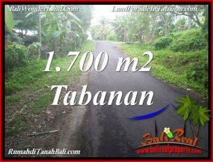 TANAH JUAL MURAH TABANAN BALI 1,700 m2 VIEW KEBUN