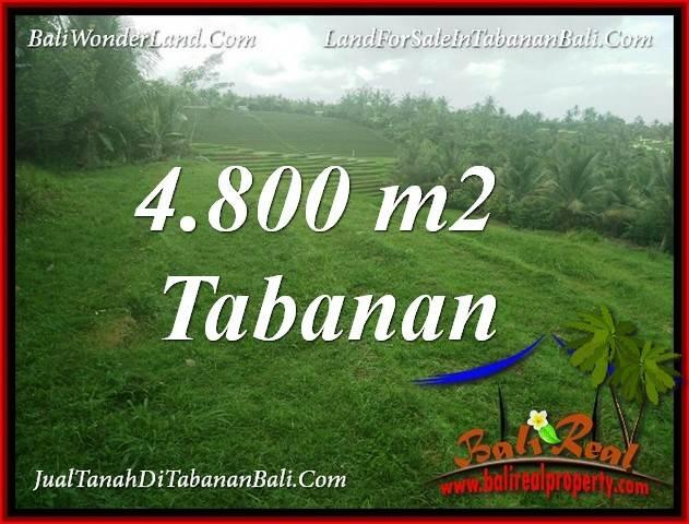 TANAH di TABANAN BALI DIJUAL 4,800 m2  VIEW LAUT DAN SAWAH