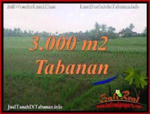 TANAH MURAH di TABANAN JUAL 30 Are VIEW SAWAH