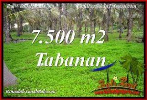 JUAL TANAH MURAH di TABANAN 7,500 m2 VIEW KEBUN, LINGKUNGAN VILLA