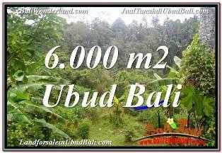 JUAL MURAH TANAH di UBUD 60 BALI Are VIEW SUNGAI DAN TEBING