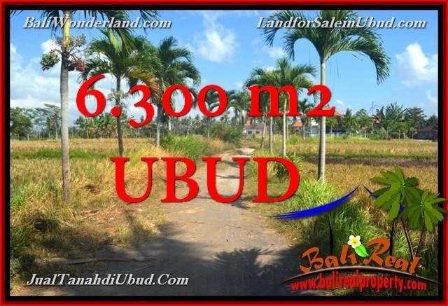 JUAL TANAH MURAH di UBUD BALI 63 Are View Tebing link Villa