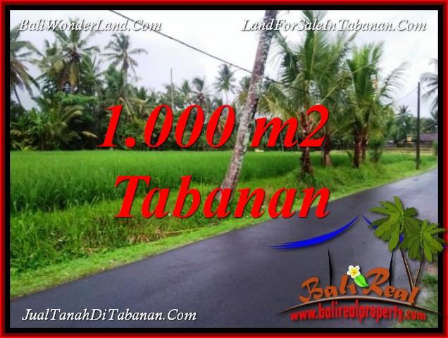 Tanah View sawah cocok untuk Villa di Tabanan Bali