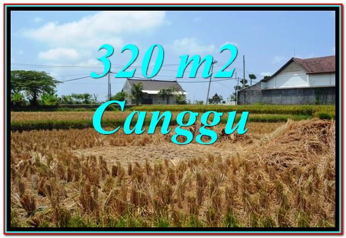 Tanah Murah di Canggu Pererenan TJCG242