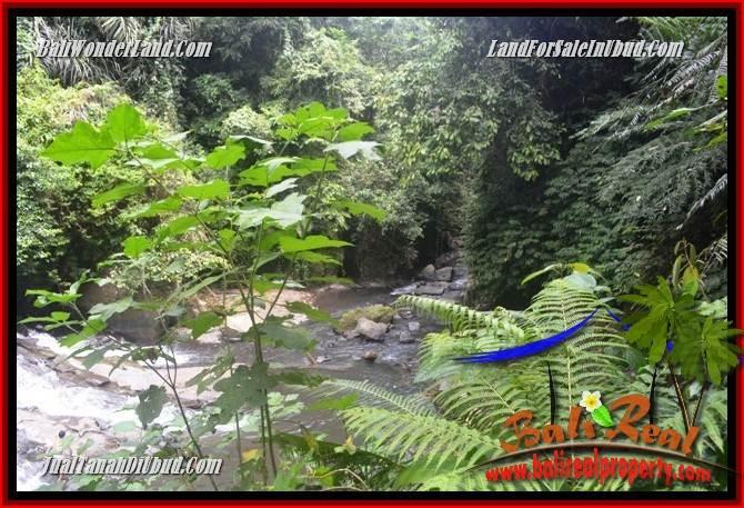 JUAL Tanah di Ubud Bali Untuk Investasi TJUB686