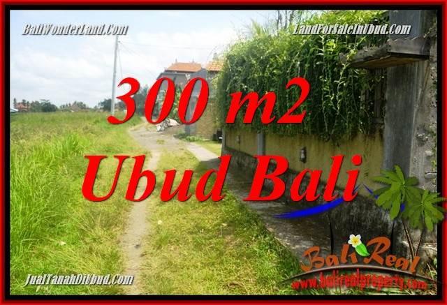 JUAL Tanah Murah di Ubud Bali 3 Are View sawah, lingkungan Villa