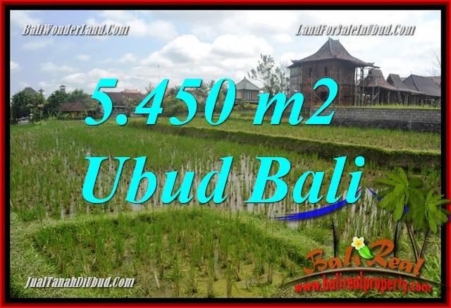 Dijual Tanah Murah di Ubud Bali 55 Are di Sentral Ubud