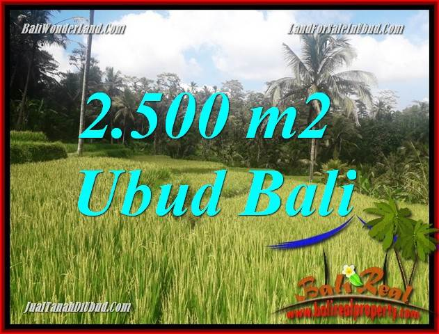 JUAL Tanah Murah di Ubud Bali 25 Are View sawah, lingkungan Villa
