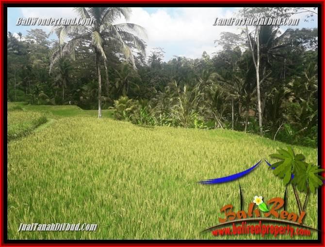 Tanah Murah di Ubud Bali Dijual Untuk Investasi TJUB690