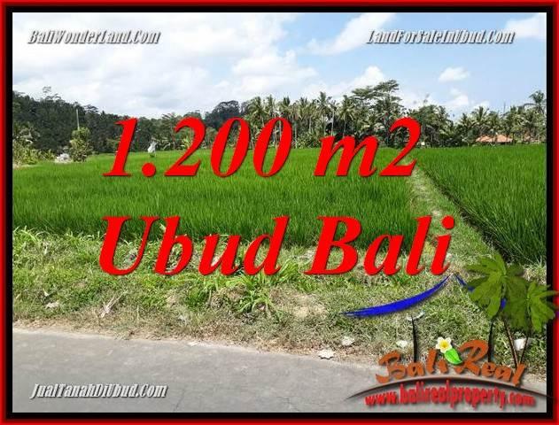 Tanah Dijual di Ubud Bali 1,200 m2 di Ubud Tampak Siring