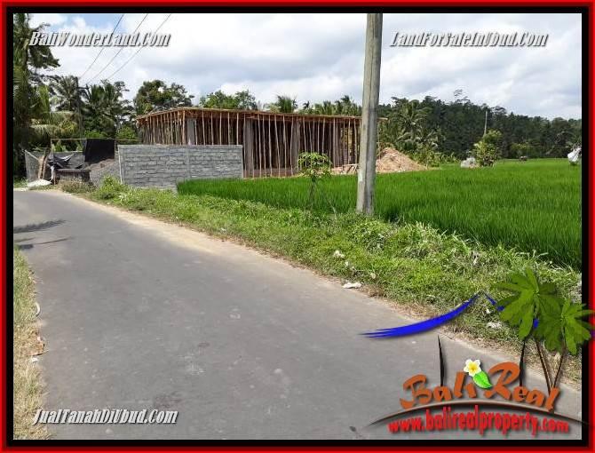 Investasi Property, jual Tanah di Ubud TJUB694