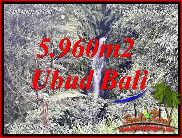 Tanah Dijual di Ubud Bali 60 Are di Ubud Payangan