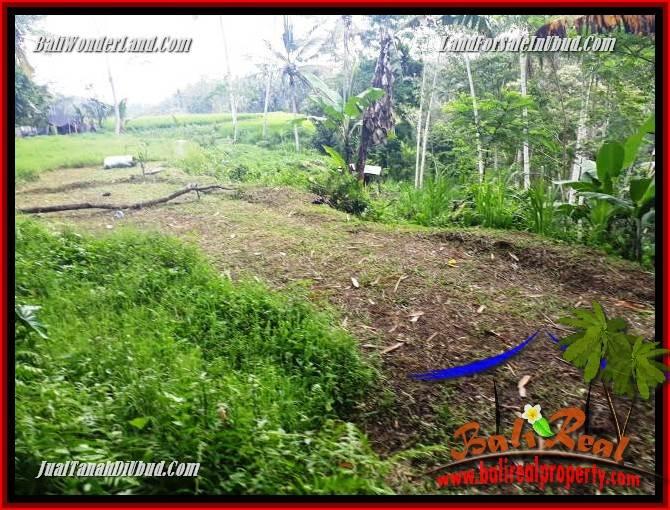 Investasi Properti, Tanah Dijual di Ubud Bali TJUB696