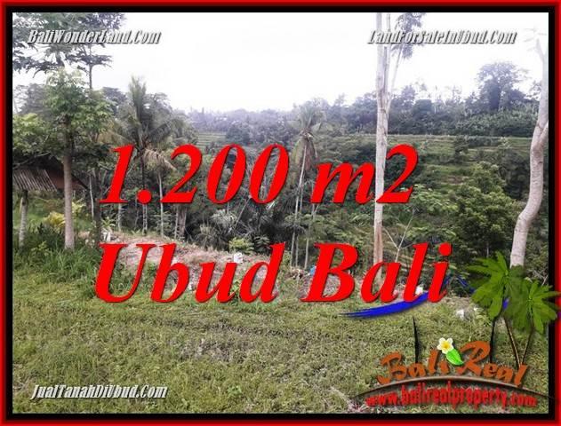 Investasi Properti, Tanah Dijual di Ubud TJUB699