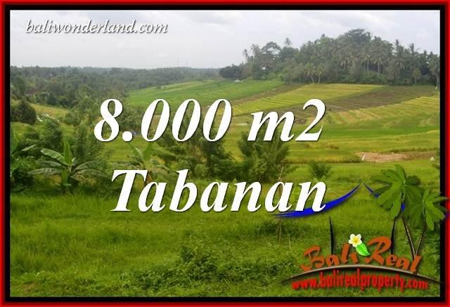 Investasi Properti, Dijual Tanah Murah di Tabanan Bali TJTB397
