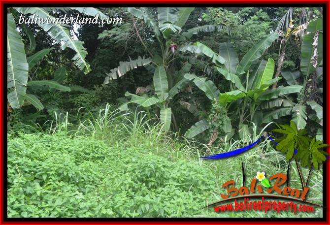 Investasi Property, Tanah Murah di Tabanan Dijual TJTB398
