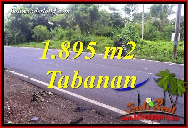 JUAL Murah Tanah di Tabanan Bali 1,895 m2 di Tabanan Selemadeg