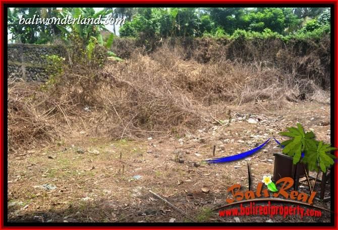 Tanah Dijual Murah di Tabanan TJTB401