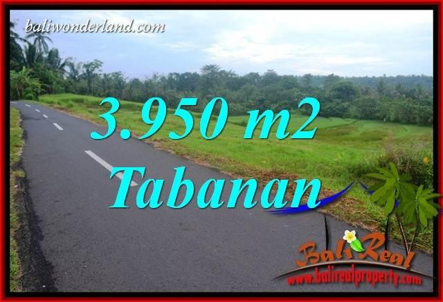Dijual Tanah di Tabanan 3,950 m2 di Tabanan Selemadeg