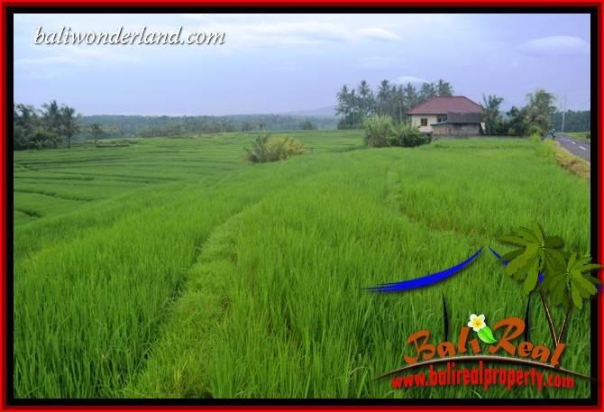 JUAL Tanah Murah di Tabanan Untuk Investasi TJTB402