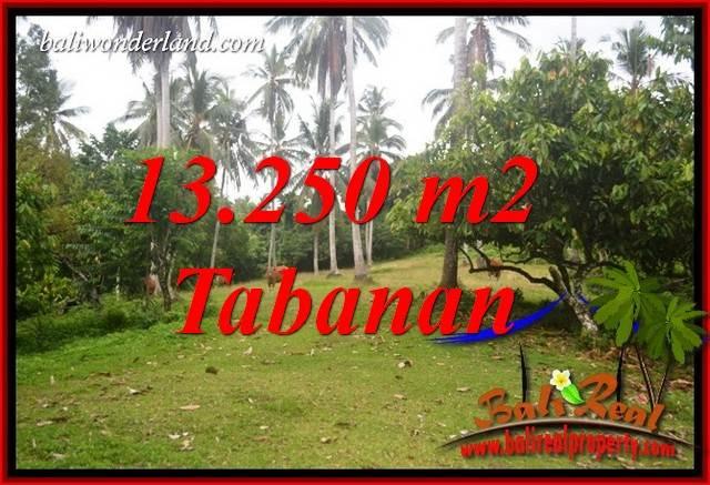 Tanah Murah dijual di Tabanan Bali 132.5 Are View Kebun