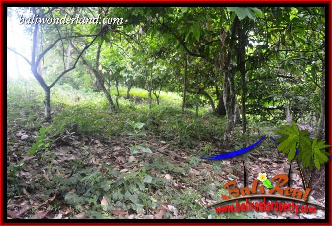Investasi Property, jual Tanah Murah di Tabanan TJTB403