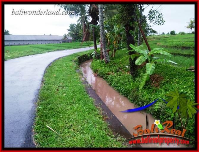 Dijual Murah Tanah di Tabanan Bali 11.22 Are di Tabanan Kerambitan