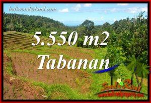 Dijual Tanah di Tabanan 5,550 m2 di Tabanan Selemadeg