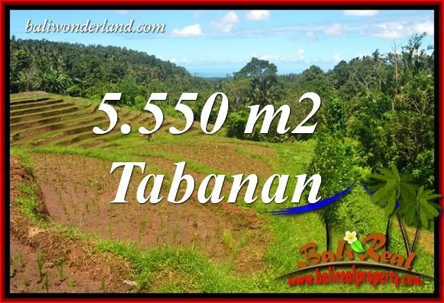 JUAL Tanah di Tabanan Bali 5,550 m2  View Laut dan Sawah