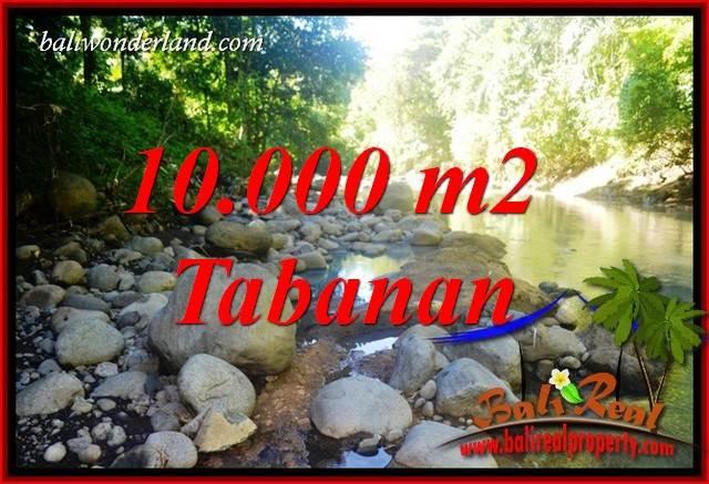 JUAL Murah Tanah di Tabanan Bali 100 Are View Sawah dan Sungai