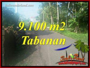 Tanah di Tabanan jual Murah 9,100 m2 View Sawah