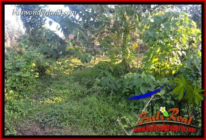 JUAL Tanah di Tabanan Bali 93.5 Are di Tabanan Selemadeg