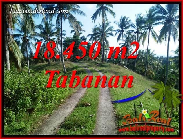 Tanah Murah  di Tabanan Bali Dijual 184.5 Are View Laut dan Kebun