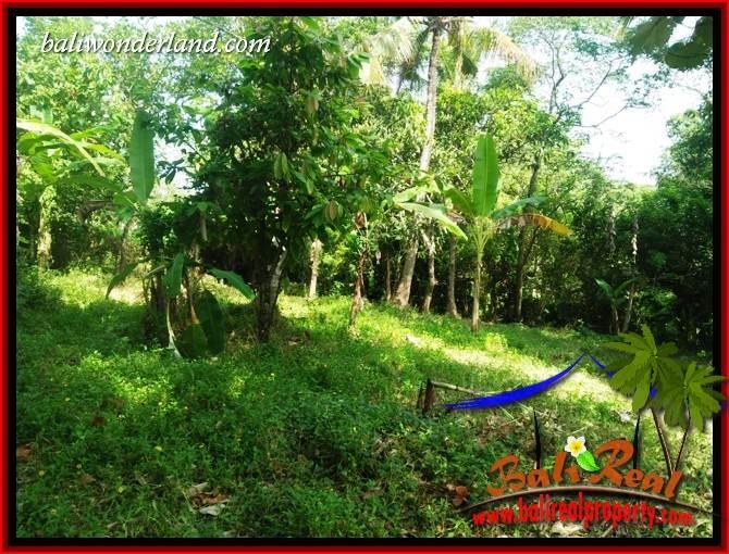 Tanah Murah Dijual di Tabanan Bali 2,800 m2 di Tabanan Selemadeg