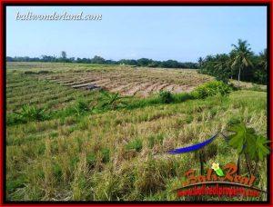 Investasi Property, jual Tanah di Tabanan Bali TJTB414