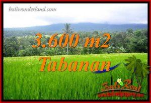 Investasi Property, jual Tanah di Tabanan Bali TJTB415