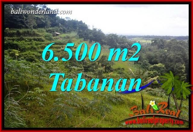 Tanah Murah  di Tabanan Bali Dijual 6,500 m2  View Gunung dan Sawah