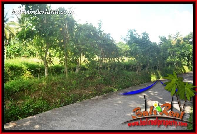 JUAL Murah Tanah di Tabanan 41 are View Sawah, Gunung dan Sungai Kecil