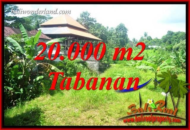 Tanah Dijual di Tabanan Bali 20,000 m2 di Tabanan Kota