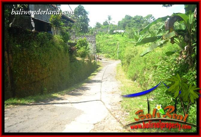 Tanah Murah Dijual di Tabanan Untuk Investasi TJTB418