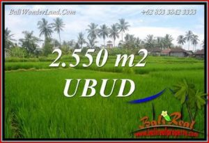 JUAL Tanah Murah di Ubud Untuk Investasi TJUB700