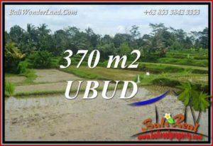 Dijual Murah Tanah di Ubud Bali 4 Are di Ubud Pejeng