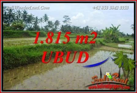 Tanah Murah Dijual di Ubud Bali 1,815 m2 di Ubud Pejeng