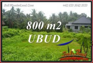 Tanah Murah jual Ubud 8 Are View sawah lingk. Villa
