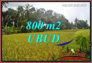 JUAL Tanah di Ubud 8 Are di Sentral Ubud